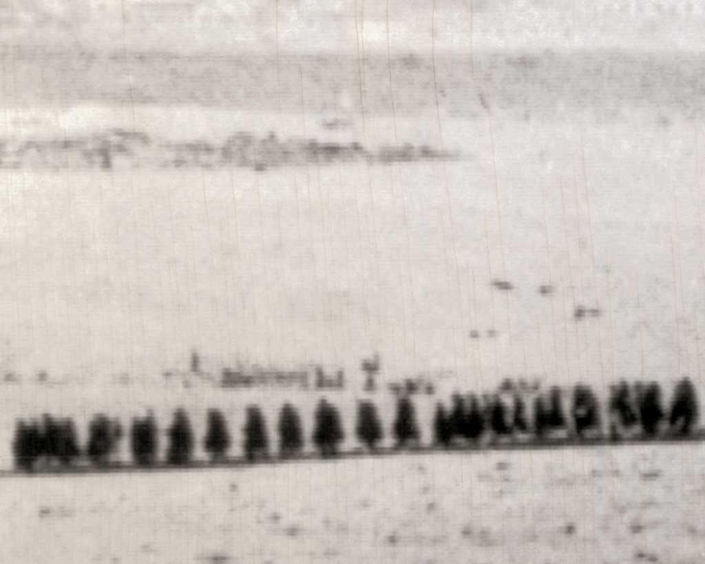 Libyan Prisoners1-22-42